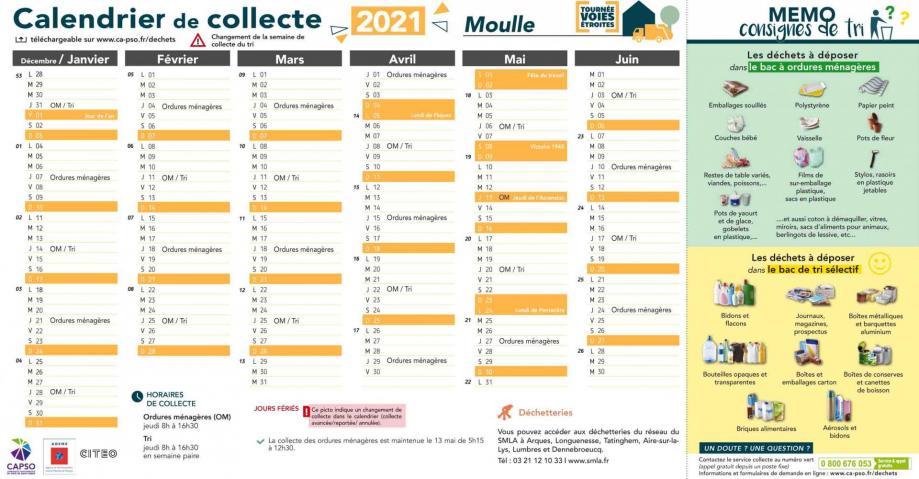 Moulle pc collecte 2021 1